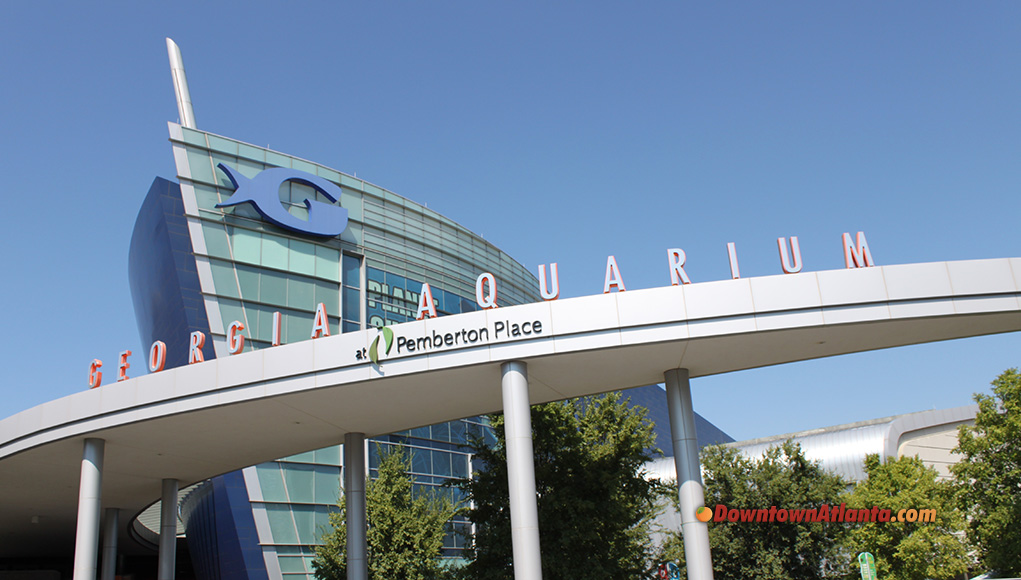 georgia-aquarium-header